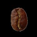 Full City Plus (Espresso)